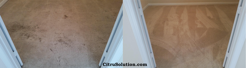 1-30-15-b-a-citrusolution-carpet-cleaning-cs