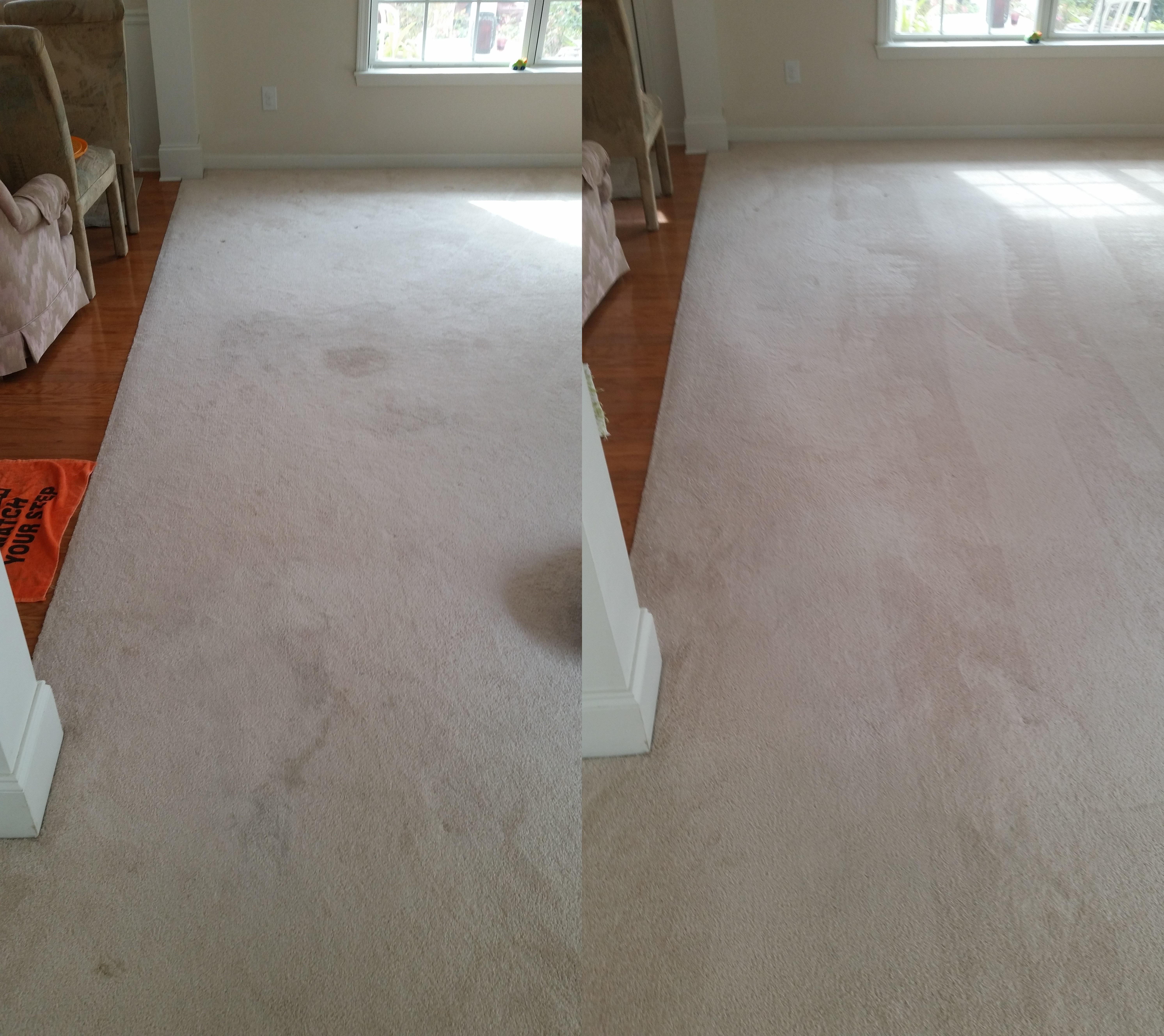 11-10-14-b-a-citrusolution-carpet-cleaning-suwanee-15