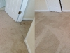 11-10-14-b-a-citrusolution-carpet-cleaning-suwanee-7