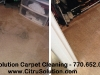 b-a-charcoal-pet-carpet-cleaning-sog