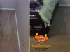 b-a-citrusolution-carpet-cleaning-gwinnett-la-b-a-1-sog