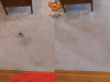b-a-citrusolution-carpet-cleaningoffice-spill-b-a-sog