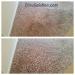 citrusolution-carpet-cleaning-5-11-15-entrance