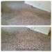 citrusolution-carpet-cleaning-5-11-15-living