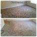 citrusolution-carpet-cleaning-5-11-15-lr