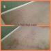 citrusolution-carpet-cleaning-5-8-15-living-left