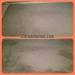 citrusolution-carpet-cleaning-5-8-15-living-side