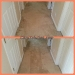 citrusolution-carpet-cleaning-hall-4-28-15