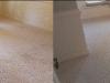 gwinnett-carpet-cleaning-bed-w-bay