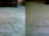 petstainremvl-jpg-w110h41-640x480