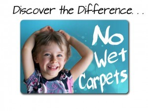 Carpet Cleaning Gwinnett